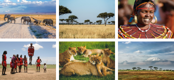 Why nature conservation is important for tourism